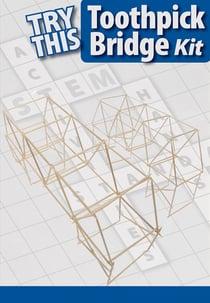 TRY THIS: Toothpick Bridge Kit