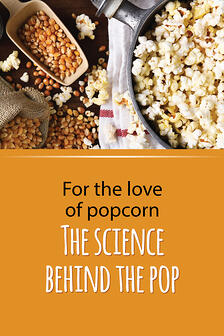 For-The-Love-Of-Popcorn-600-0320