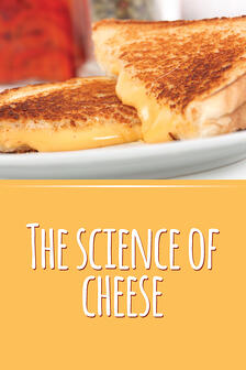 Science-of-cheese-600-0320